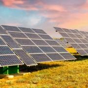 imagen con paneles solares en el campo